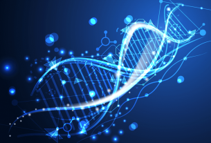 Silico Drug Discovery Services Market